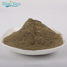 green kelp meal for animal feed supplement
