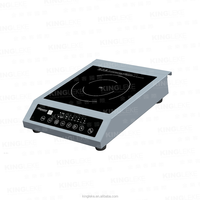 Commercial Heavy Duty Power Induction Cooker