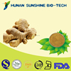 Help Preventing Or Treatment Nausea and Vomiting Brownish yellow powder Ginger Extract