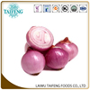 /product-detail/fresh-red-onion-chinese-onion-60335712080.html