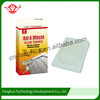 Custom design convenient mouse and insect glue trap