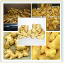 Agro Fresh Dehydration ginger