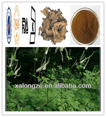 Extract of crown of Black Cohosh Triterpene Glycosides2.5~8 % Black Cohosh CAS NO: 8047-15-2 Actaea racemosa plant extract
