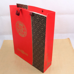 Pantone Color Print metallic kraft paper shopping bags
