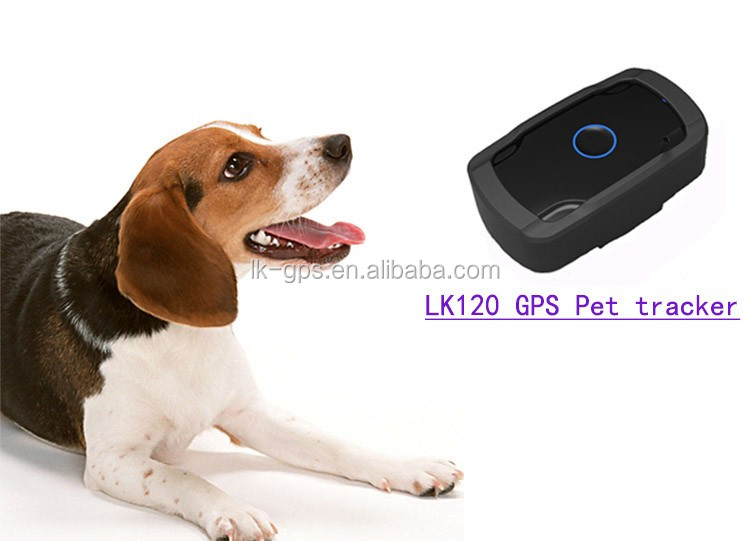 pet gps tracking logger for small pets Geo-fence ---LK120 Black