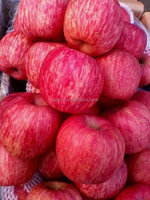 red color apple chinese red big apple shandong fresh red fuji apple