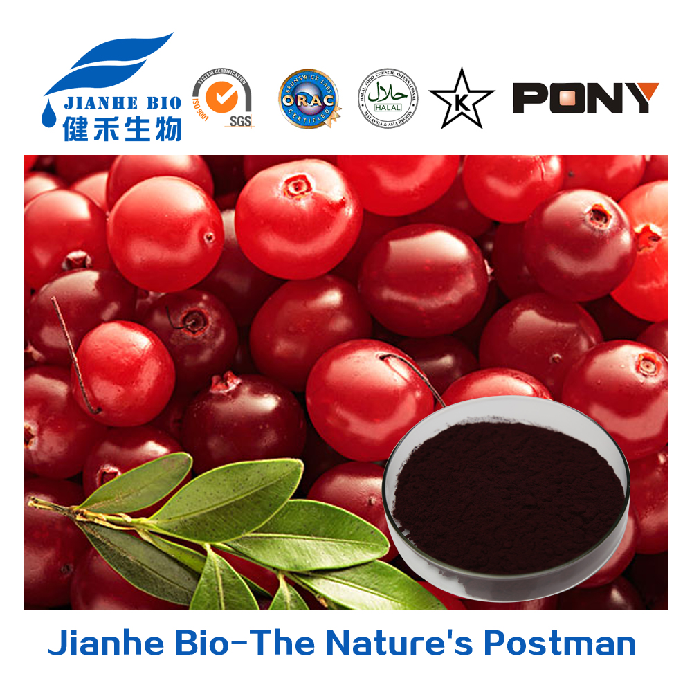 100% pure natural 10:1 20:1 cranberry extract/free sample cranberry juice extract/bilberry fruit powder (UV/DMAC)