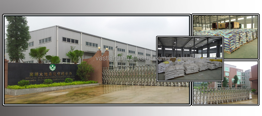 Agriculture grade monoammonium phosphate MAP fertilizer