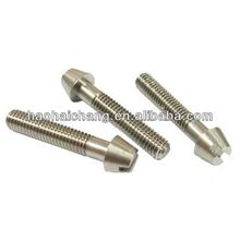 Cheap popular galvanized pan head self tapping screw