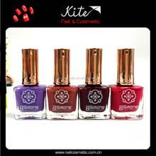 Cheap wholesale private label nail polish/nail varnish/nail enamel custom label