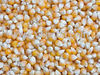 We supply Dry Yellow and White Corn