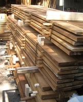 Gemelina Timber for sale