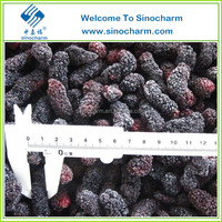 Frozen Mulberry Fresh Fruit