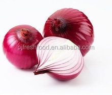 Export fresh onion from Chinese factory