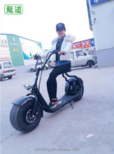Chinese promotion off road brushless auto balancing electric motorcycle