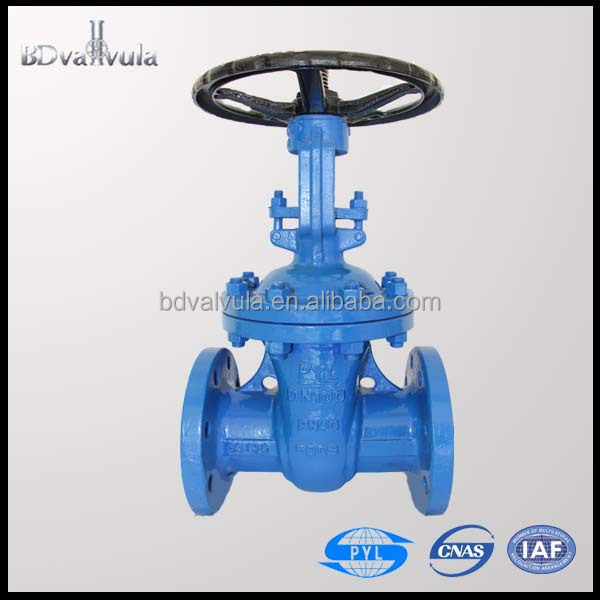 DIN WCB rising stem gate valves dn80