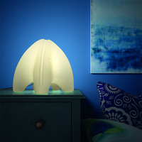 plastic LED night lights decorative warm white lamp wireless rechargeable table lamp