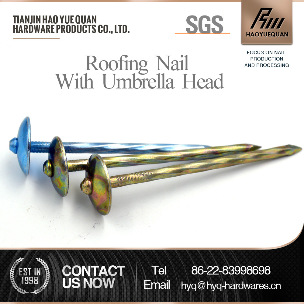 color machine head umbrella roofing nails with good character
