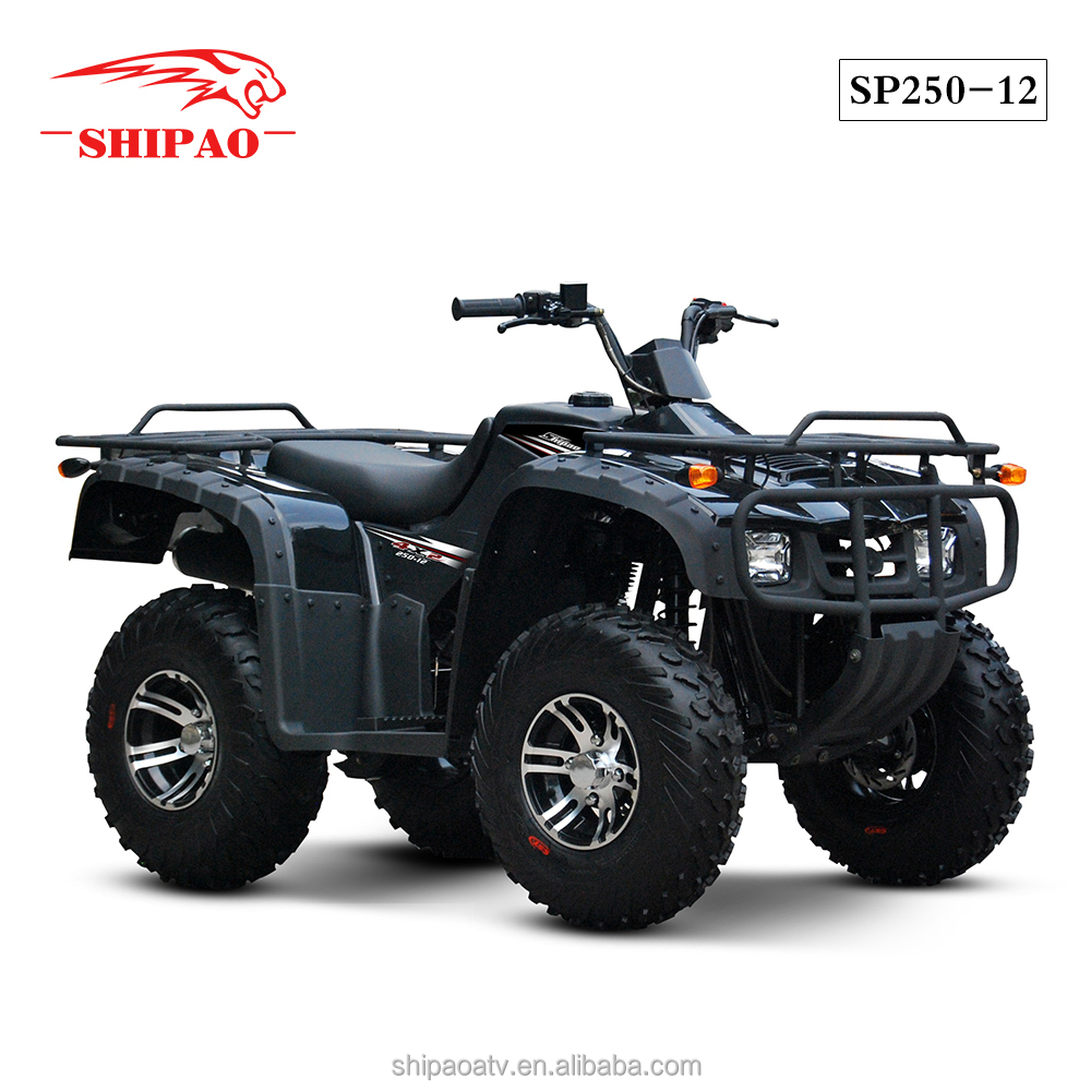 SP250-12 Zongshen engine hunter factory direct atv