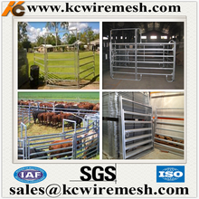 Factory!!!!!!! Kangchen Australia/New Zealand Hot Sale Portable Horse Cattle Yard Panel Fences