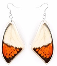 REAL butterfly wings fancy crystal girls earring for party