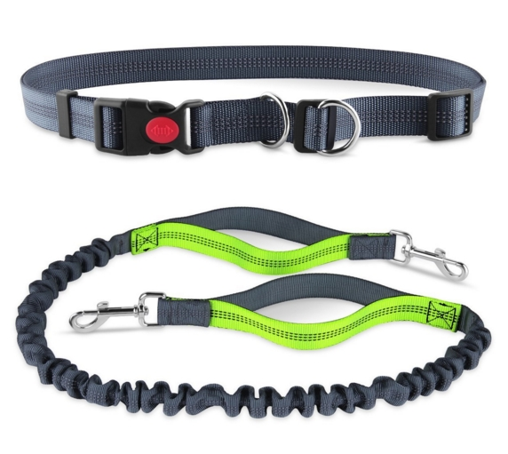 Dual Handle Bungee Waist Leash For Up To <strong>150</strong> lbs Large Dogs