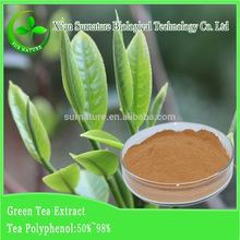 High grade pure bio green tea extract/green tea extract powder
