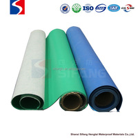 roofing sheet waterproof membrane type PVC for roof green