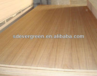 high quality and best price mdf 3mm for door skin