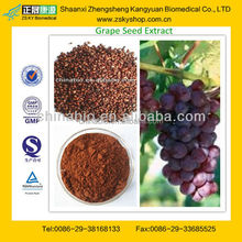 GMP supply High Quality Grape Seed Dry Extract with OPC 95%
