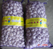Wholesale Normal White Garlic Price in Low Price