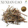Chinese Herb Extract Xi Qian Cao Extract as Herbal Supplements Ingredients