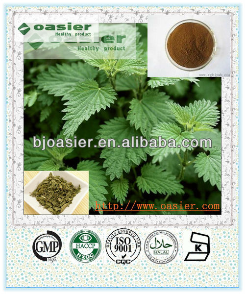 Nettle Plant Extract
