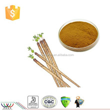 Top quality 4:1 burdock root extract / Test by TLC / Anti-aging strength kidney function lower blood pressure
