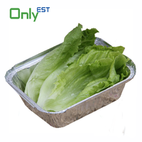 China supplier rectangular disposable aluminium foil container