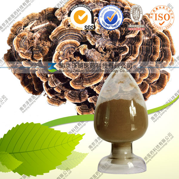Factory supply 50% versicolor Polysaccharide healthy food