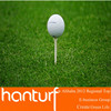 Best artificial golf grass for indoor golf course