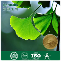 Absolutely Water-Soluble Ginkgo Biloba Extract Total Ginkgo Flavone Glycosides >24.0%Total Terpene Lactones>6.0%