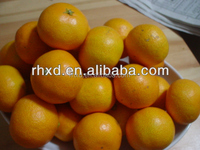 Chinese factory of sweet Baby orange/chinese honey orange/mandarin orange