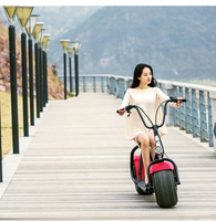 Two Wheel 800W Rechargeable Electric Motorbike cheap electric scooter made in China