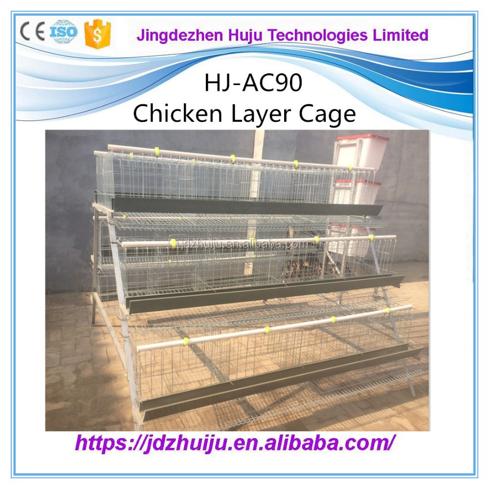 Poultry Breeding Equipment Automatic Layer Chicken Cage / Hot Sales House Chicken for 96 PCS