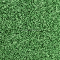 Decoration Indoor Outdoor Landscape Artificial Turf