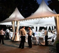 European Style Pagoda Canopy Tent for Party