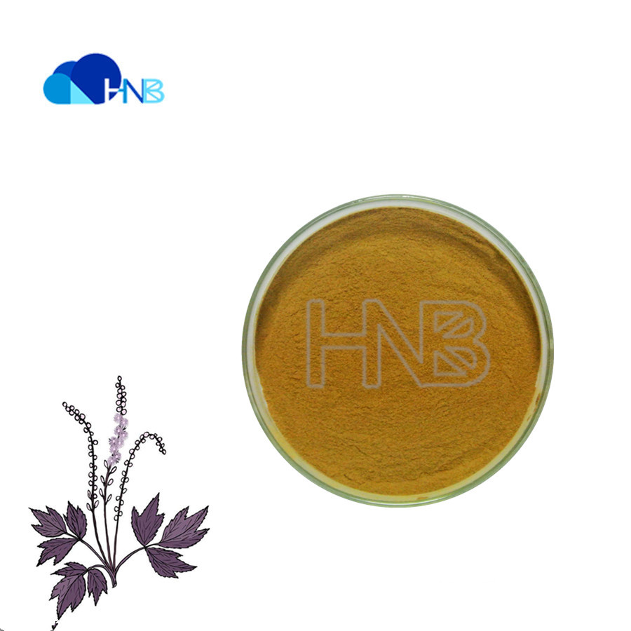 Black Cohosh Root Extract Actaea racemosa Cimicifuga Racemosa extract with 8% Triterpene Glycosides