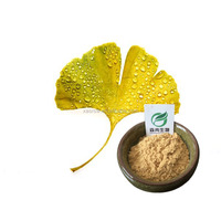 Health Supplement Ginkgo Biloba Leaf Extract