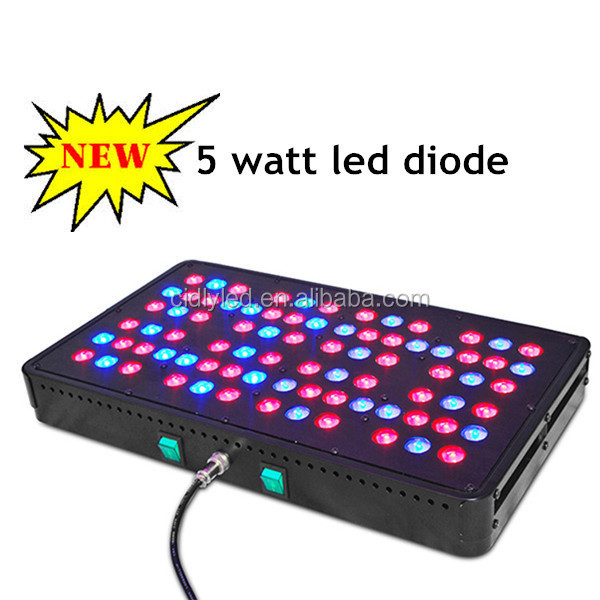 Europe best seller full spectrum 5 watt chip led grow lamp CIDLY cheap led grow lights