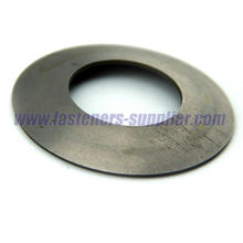 DIN6796 Spring Steel Wing Spring Washers in China supplier