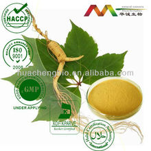 Anticancer Remedy Panax Ginseng Root P.E./80% Ginsenosides