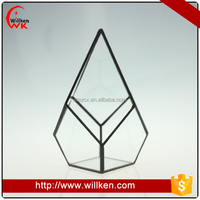 Air plant copper terrarium geometrical glass