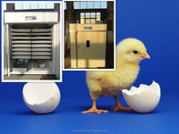 Full Automatic cheap chicken&quail&ostrich eggs incubator for sale with CE approved /industrial hatcher